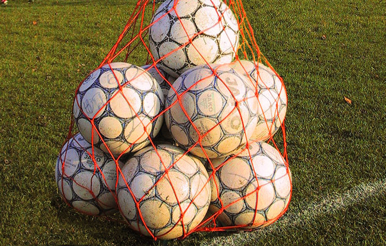 Ball carrier nets